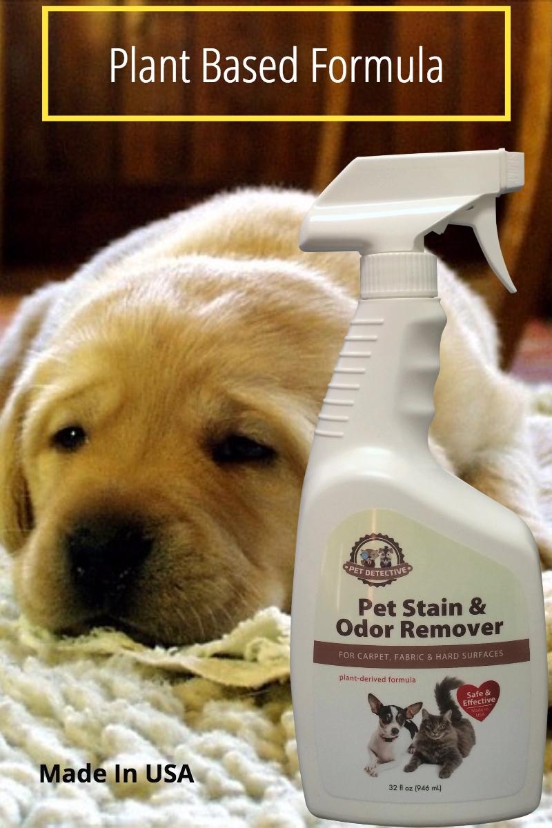 Best Carpet Deodorizer For Cat Urine